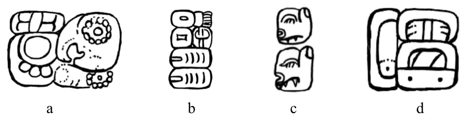 Illustration of four Mayan hieroglyphs that are rounded and organicly shaped