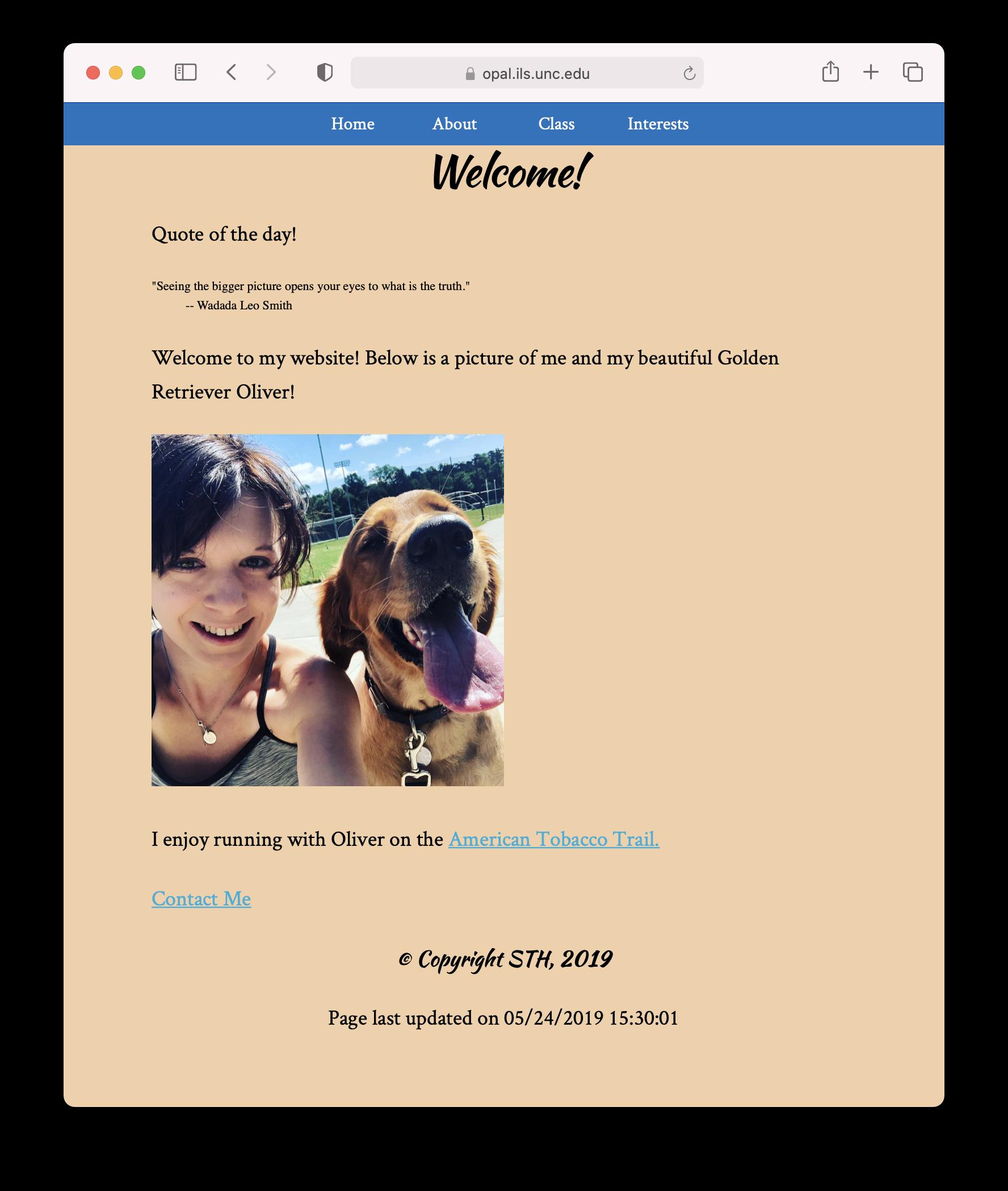Screenshot of Bri's website