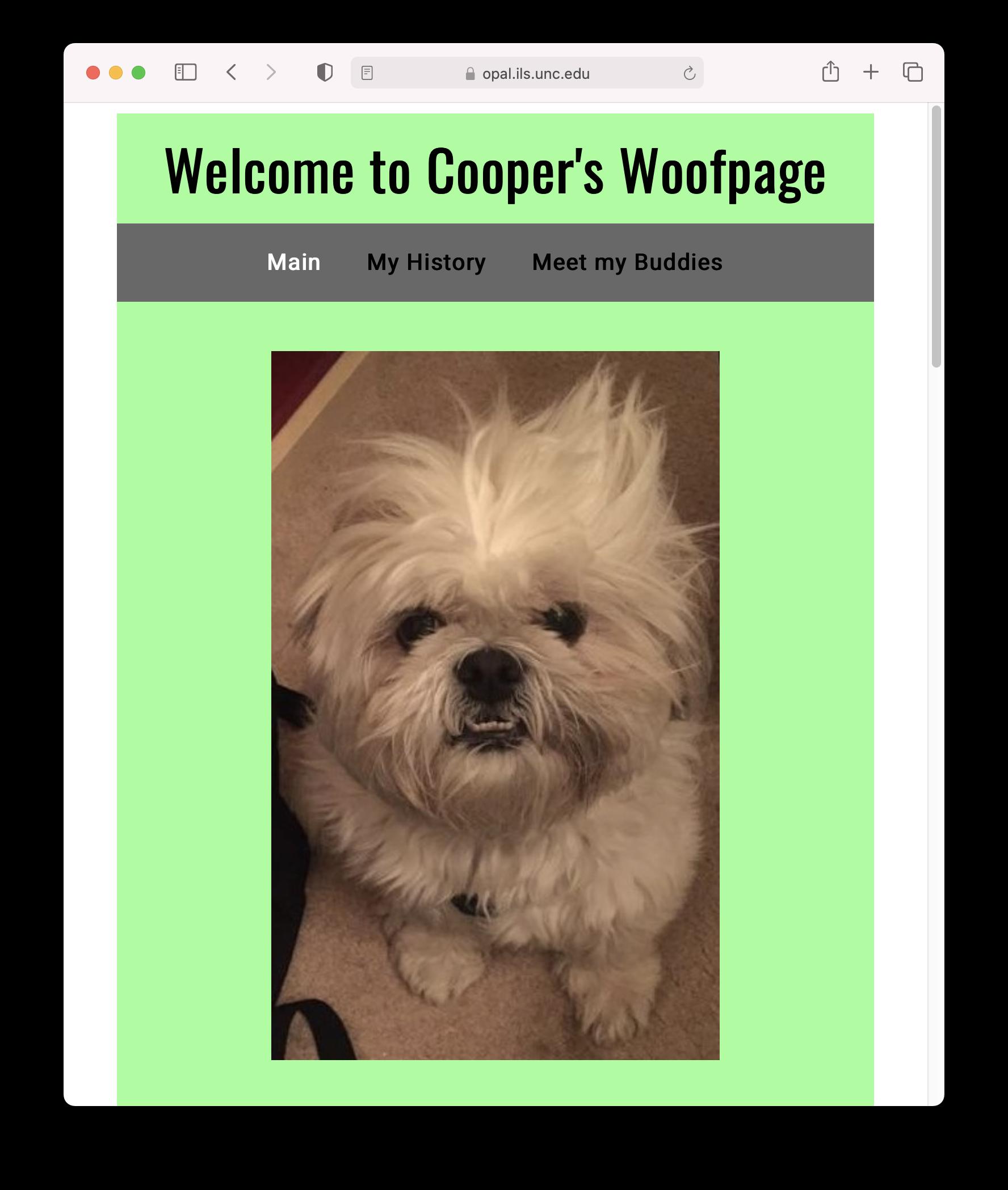 Screenshot of Cooper's website